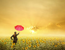 Red umbrella Business woman standing in sunset over sunflowers field Stock Photography