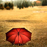 Red Umbrella In The Field Royalty Free Stock Photo