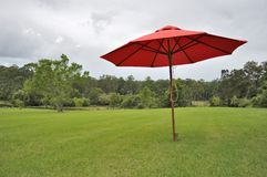 Red umbrella, green grass Royalty Free Stock Photos