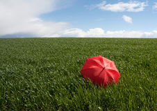 Red umbrella on the green meadow. Symbol of protection and precaution of insurance business Royalty Free Stock Images
