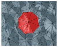 Red umbrella in the grey umbrellas - pattern Stock Photography