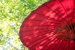 Red Umbrella outdoor and green leaf. Bokeh Royalty Free Stock Images