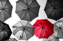 Red umbrella standing out royalty free stock photo