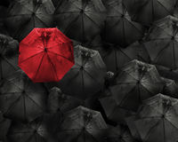 Red umbrella with water drop stand out from the crowd of many bl Royalty Free Stock Images