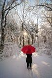 Red Umbrella Winter Walk Royalty Free Stock Photography