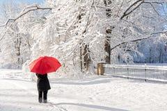Red Umbrella Winter Walk Stock Photography