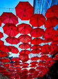 Red Umbrellas In the Air Royalty Free Stock Image