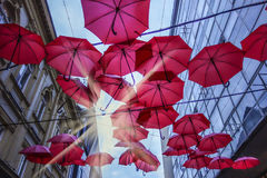 Red umbrellas in Belgrade Royalty Free Stock Images