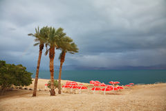 Red umbrellas and purple thunderheads Royalty Free Stock Image