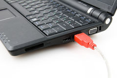Red usb plug and notebook Stock Image