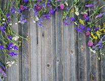 Red ut färgrika blommor för sommar på tappning träbakgrund Arkivbilder