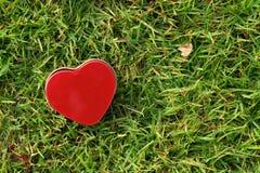 Red valentine heart in garden background Royalty Free Stock Photo