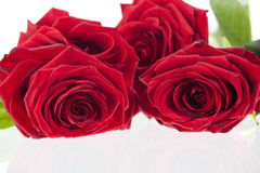 Red Valtines heart and rosse. GN. Bouquet withe red roses laying on a glass surface. GN stock photography