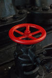Red valve. Stock Images