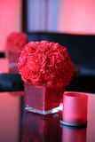 Red vase. Whith red Carnation Stock Photos