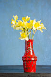 Red vase on table with spring narcissus Royalty Free Stock Images