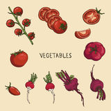 Red vegetables Royalty Free Stock Photos