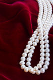 Red velvet background with pearls Royalty Free Stock Images