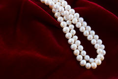 Red velvet background with pearls Stock Images