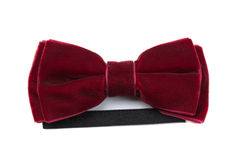 Red velvet bow tie Stock Images
