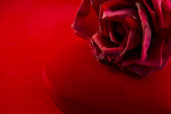 Red velvet box with rose Royalty Free Stock Images