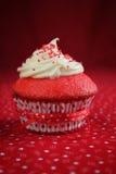 Red velvet cupcake Stock Image