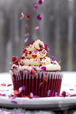 Red Velvet Cupcake in Snow with Heart Sprinkles Royalty Free Stock Photos