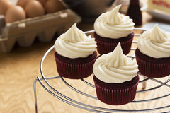 Red Velvet Cupcakes with Cream Cheese Frosting. On a cooling rack. Baking ingredients are in the background royalty free stock photography