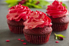 Red velvet cupcakes Royalty Free Stock Photography