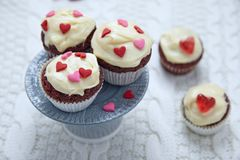 Red velvet cupcakes decorated with hearts. For Valentines day Royalty Free Stock Image
