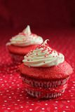 Two red velvet cupcake Royalty Free Stock Image
