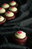 Red Velvet Cupcakes. Sweet Red Velvet Cupcakes with floral design on top of cream. on a black background royalty free stock photos