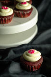 Red Velvet Cupcakes. Sweet Red Velvet Cupcakes with floral design on top of cream. on a black background stock photography