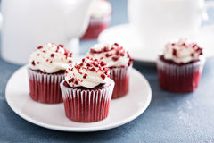Red velvet cupcakes for Valentines Day Royalty Free Stock Images