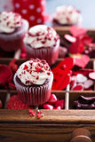 Red velvet cupcakes for Valentines day Stock Photography