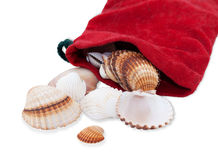 Red velvet pouch from which rained shells isolated Stock Photo