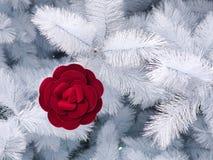 Red velvet rose among white Christmas tree stock photography