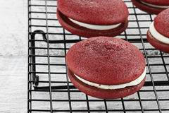 Red Velvet Whoopie Pies Stock Images