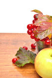 Red viburnum berries in the glass and an apple Royalty Free Stock Images