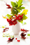 Red viburnum berries and gloriosa Royalty Free Stock Images