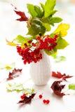 Red viburnum berries and gloriosa Royalty Free Stock Images