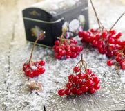 Red viburnum berries and snow on a wooden background. Viburnum twigs on a wooden table Royalty Free Stock Images