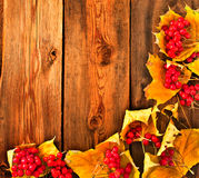 Red viburnum on a wooden table Stock Photos
