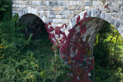 Red vine on old stone bridge. Beautiful shot of red vine on old stone bridge built in 1874 off of route 66 in Virginia Royalty Free Stock Photography