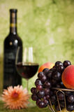 Red vine with red grapes and flower Stock Photos