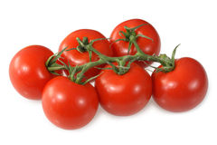 Red vine ripened tomatoes. Royalty Free Stock Images