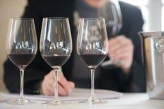 Red Vine tasting Royalty Free Stock Photos