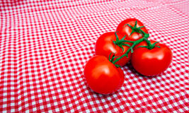 Red Vine tomatoes against red and white chequered cloth Stock Photography