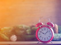 Red vintage alarm clock with pine tree branch Stock Photos