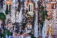 Red vintage old brick wall with windows and green ivy Royalty Free Stock Image